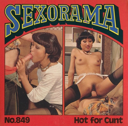 Sexorama 849 – Hot for Cunt
