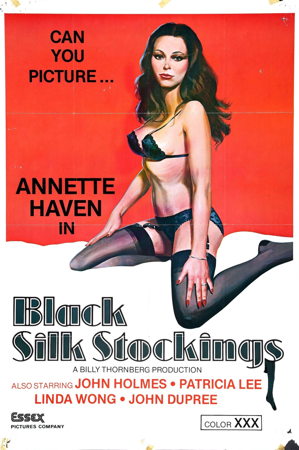Black Silk Stockings (1978)